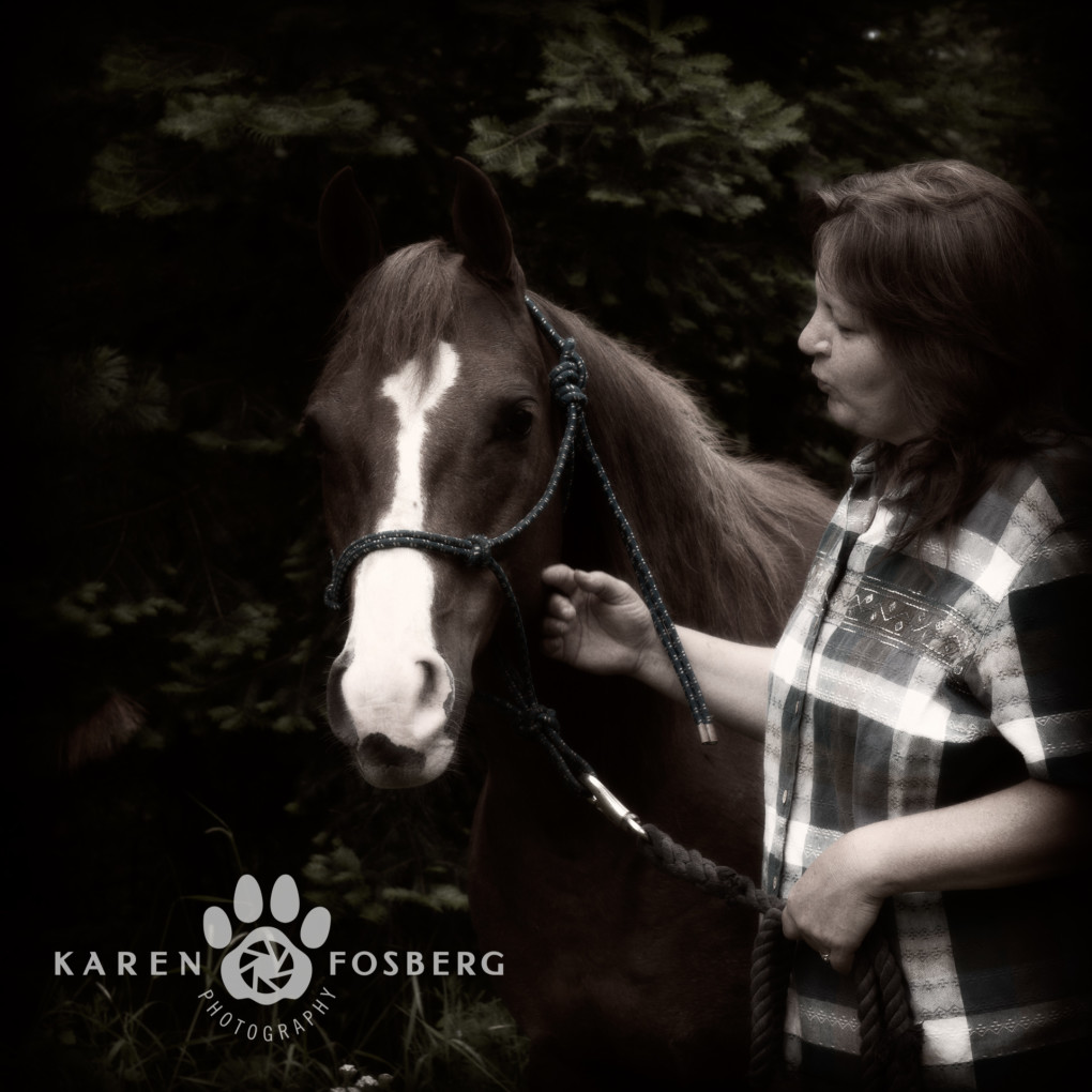 horse-pet-photography-logo